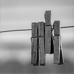 4 pegs on a line in monochrome