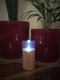 Redolent nebulizing diffuser with plants in the background