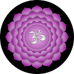 Violet lotus flower representing the crown chakra