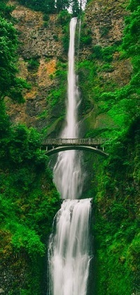 A cascading waterfall set against deep green foliage with a bridge in the foreground